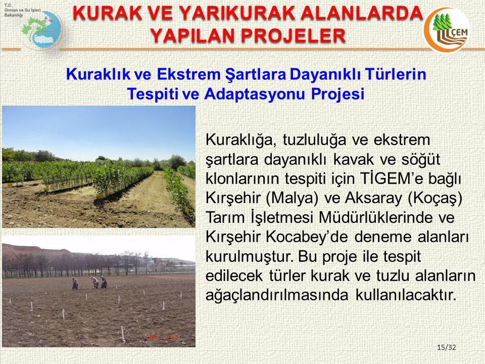 15/32 Kuraklık ve Ekstrem Şartlara Dayanıklı Türlerin Tespiti ve Adaptasyonu Projesi Kuraklığa, tuzluluğa ve ekstrem şartlara dayanıklı kavak ve söğüt klonlarının tespiti için TİGEM'e bağlı Kırşehir (Malya) ve Aksaray (Koçaş) Tarım İşletmesi Müdürlüklerinde ve Kırşehir Kocabey'de deneme alanları kurulmuştur.