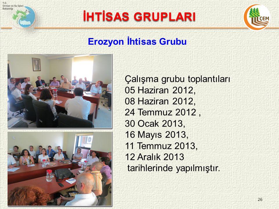 26 Çalışma grubu toplantıları 05 Haziran 2012, 08 Haziran 2012, 24 Temmuz 2012, 30 Ocak 2013, 16 Mayıs 2013, 11 Temmuz 2013, 12 Aralık 2013 tarihlerinde yapılmıştır.