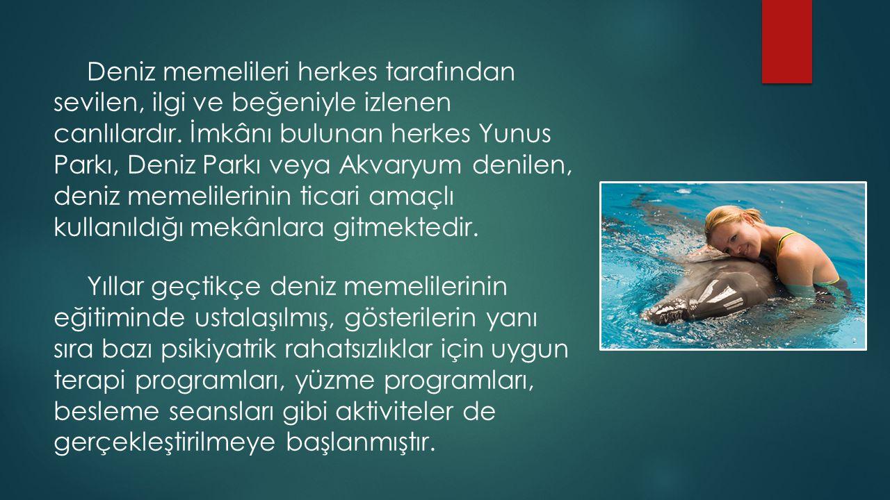Deniz memelileri herkes tarafından sevilen, ilgi ve beğeniyle izlenen canlılardır. İmkânı bulunan herkes Yunus Parkı, Deniz Parkı veya Akvaryum denile