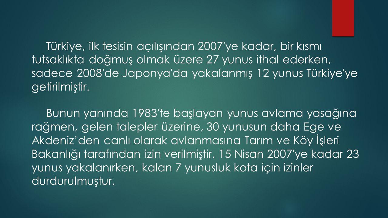 Türkiye, ilk tesisin açılışından 2007'ye kadar, bir kısmı tutsaklıkta doğmuş olmak üzere 27 yunus ithal ederken, sadece 2008'de Japonya'da yakalanmış
