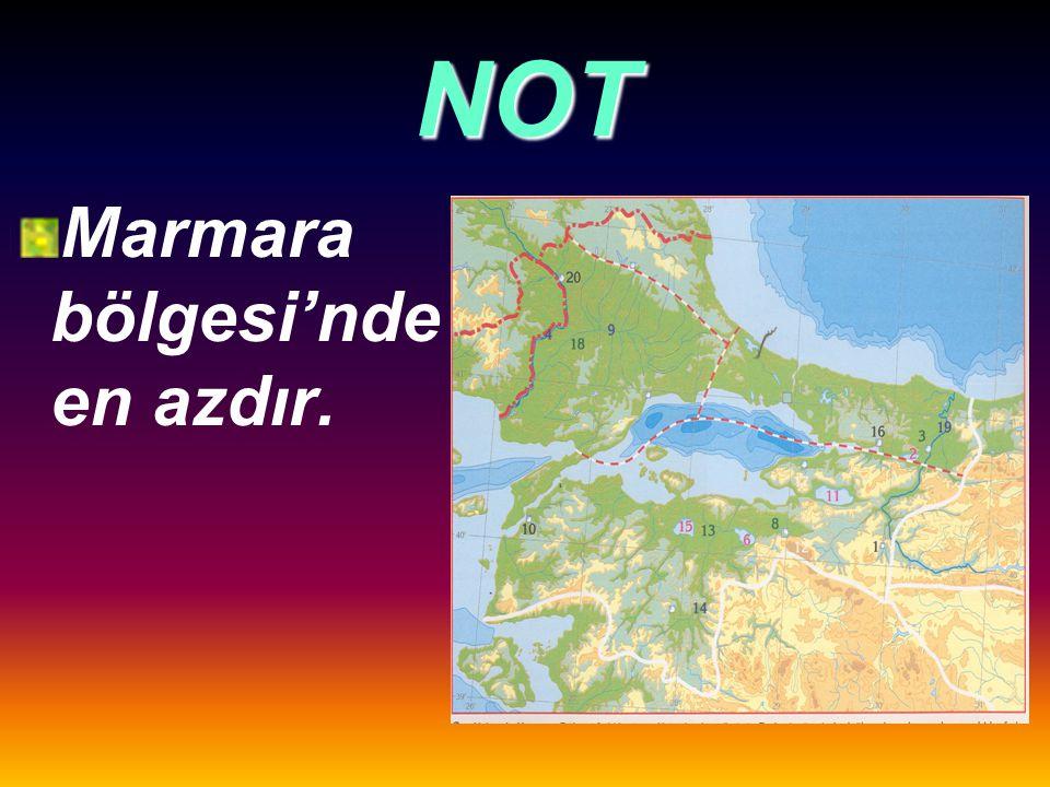 NOT Gerçek alan ile izdüşüm alan arasındaki fark, Doğu Anadolu Bölgesi'nde en fazladır.