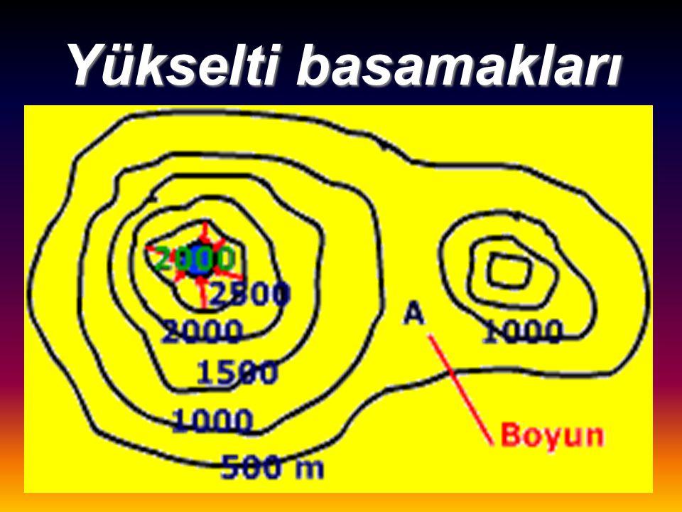 Fiziki haritalarda Yükselti basamakları Eğim hesaplanır Profil çıkarılır Yeryüzü şekilleri gösterilir.