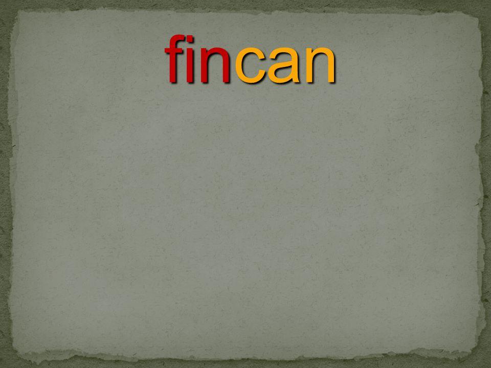 fincan