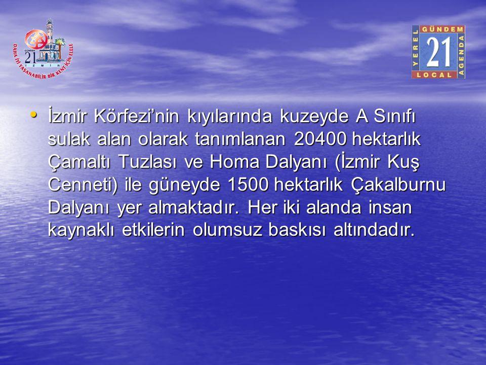 İzmir Körfezi'nin kıyılarında kuzeyde A Sınıfı sulak alan olarak tanımlanan 20400 hektarlık Çamaltı Tuzlası ve Homa Dalyanı (İzmir Kuş Cenneti) ile gü