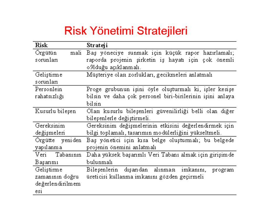 Risk Yönetimi Stratejisi -devamı Kaçınma stratejisi.