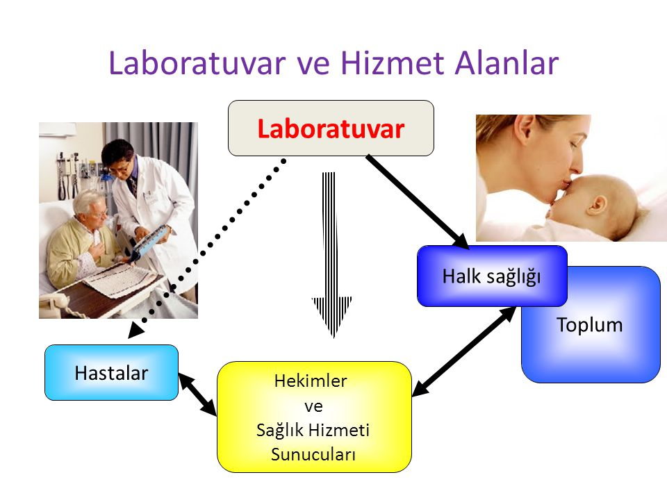 Toplum Laboratuvar ve Hizmet Alanlar Hastalar Halk sağlığı Laboratuvar Hekimler ve Sağlık Hizmeti Sunucuları