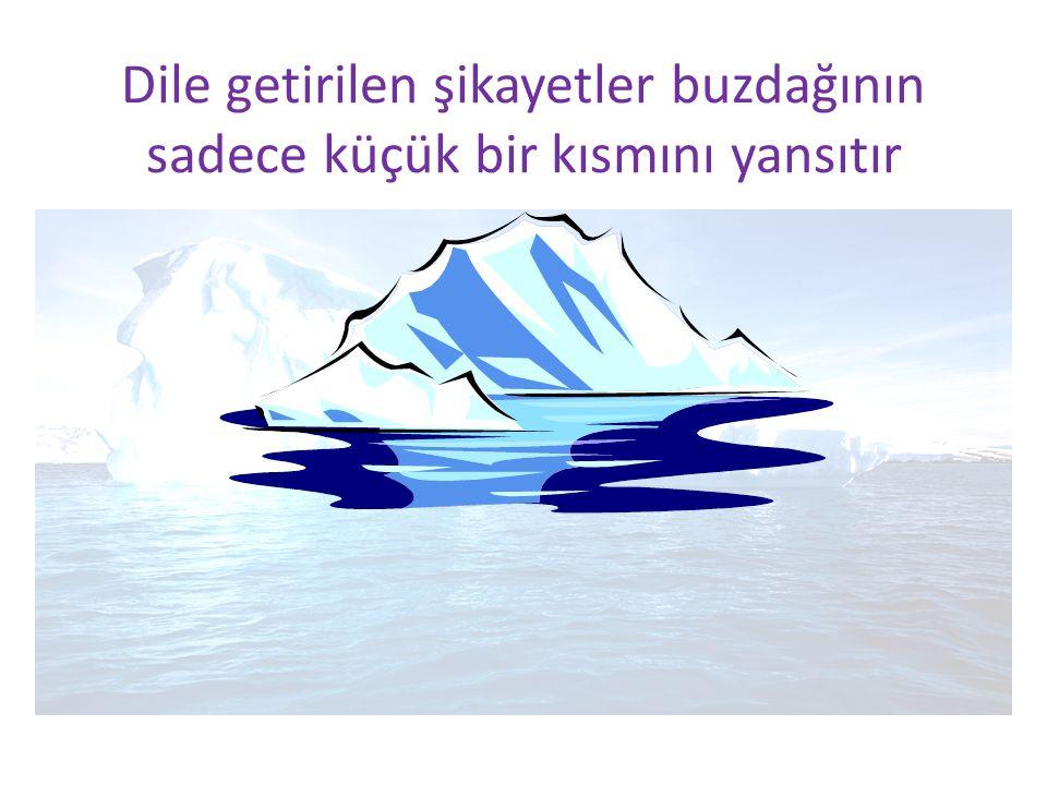 Dile getirilen şikayetler buzdağının sadece küçük bir kısmını yansıtır