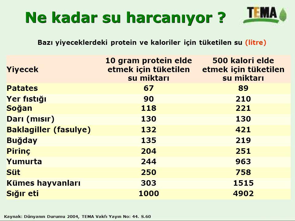 Yiyecek 10 gram protein elde etmek için tüketilen su miktarı 500 kalori elde etmek için tüketilen su miktarı Patates6789 Yer fıstığı90210 Soğan118221