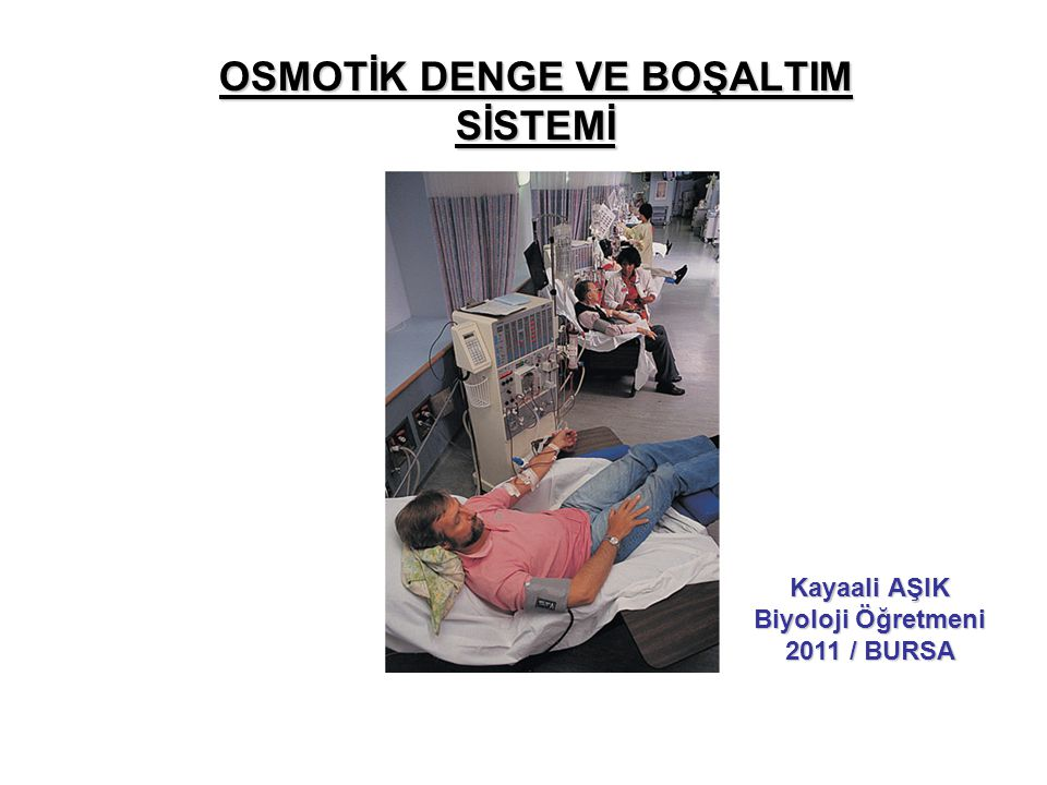 OSMOTİK DENGE VE BOŞALTIM SİSTEMİ Kayaali AŞIK Biyoloji Öğretmeni 2011 / BURSA