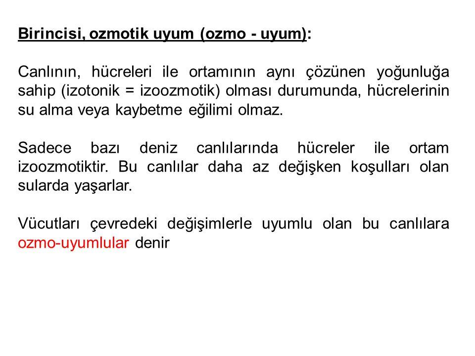 Birincisi, ozmotik uyum (ozmo - uyum): Canlının, hücreleri ile ortamının aynı çözünen yoğunluğa sahip (izotonik = izoozmotik) olması durumunda, hücrel