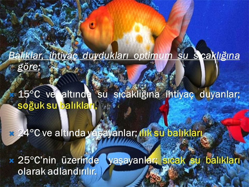 Balıklar, ihtiyaç duydukları optimum su sıcaklığına göre;  15  C ve altında su sıcaklığına ihtiyaç duyanlar; soğuk su balıkları,  24  C ve altında yaşayanlar; ılık su balıkları  25  C'nin üzerinde yaşayanlar; sıcak su balıkları olarak adlandırılır.