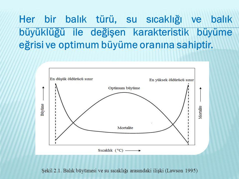 Her bir balık türü, su sıcaklığı ve balık büyüklüğü ile değişen karakteristik büyüme eğrisi ve optimum büyüme oranına sahiptir. Şekil 2.1. Balık büyüm