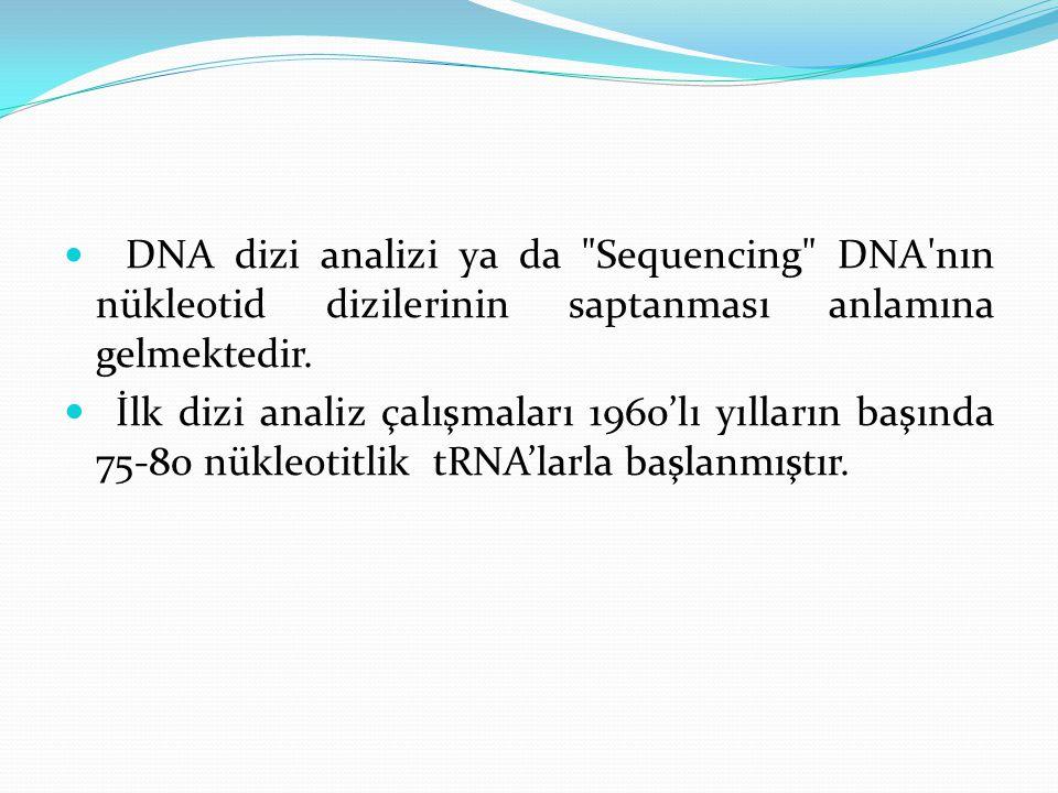 DNA dizi analizi ya da