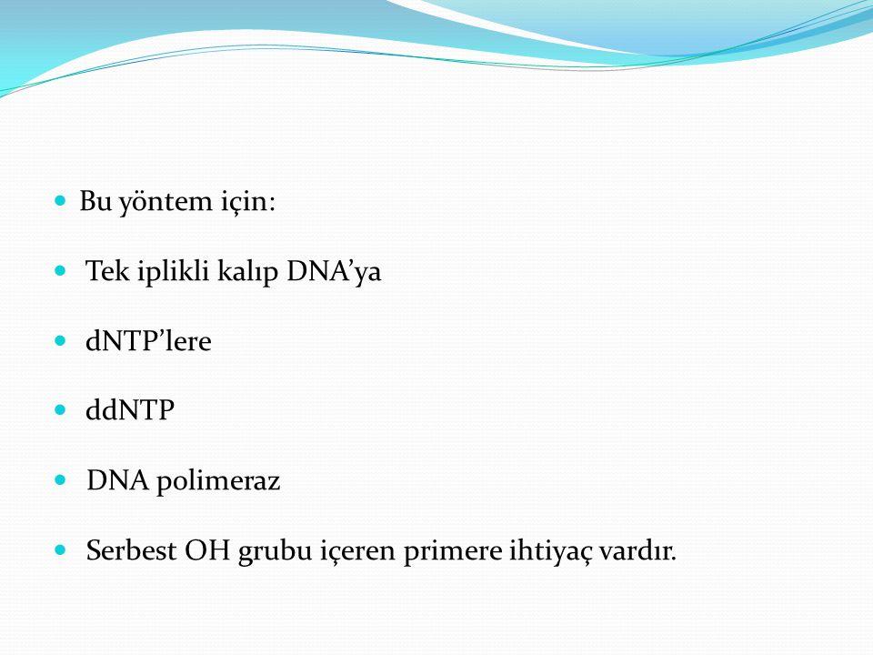 Bu yöntem için: Tek iplikli kalıp DNA'ya dNTP'lere ddNTP DNA polimeraz Serbest OH grubu içeren primere ihtiyaç vardır.