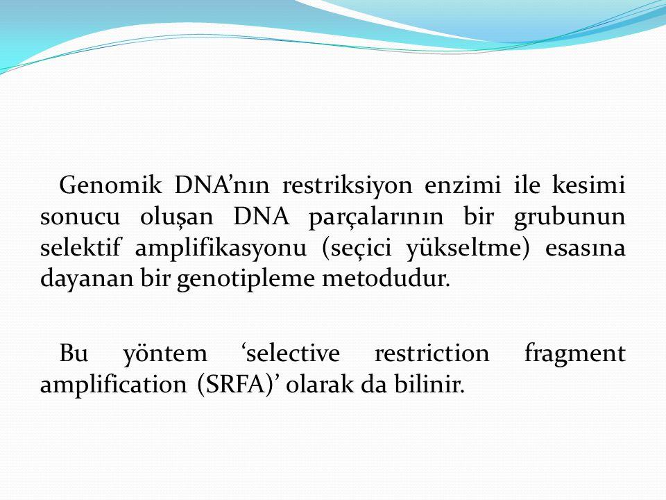 Genomik DNA'nın restriksiyon enzimi ile kesimi sonucu oluşan DNA parçalarının bir grubunun selektif amplifikasyonu (seçici yükseltme) esasına dayanan