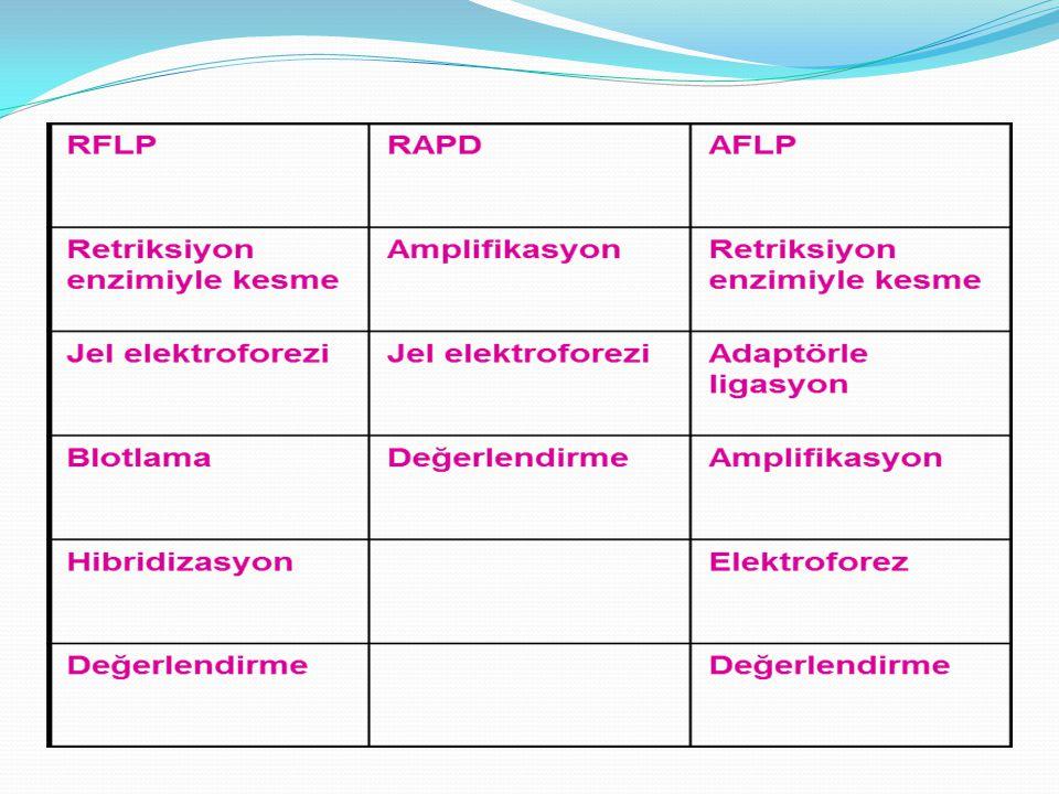 AFLP tekniği, RFLP tekniğinin kesme-tanıma kısımlarının PCR ile çoğaltılmasına dayalı bir DNA markır tekniğidir.