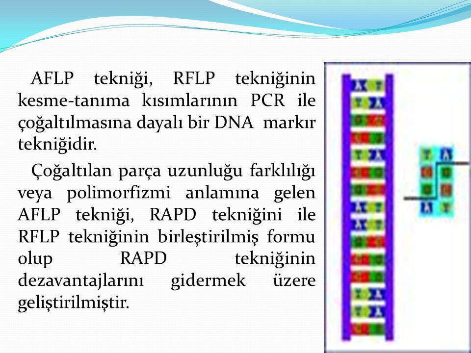 AFLP tekniği, RFLP tekniğinin kesme-tanıma kısımlarının PCR ile çoğaltılmasına dayalı bir DNA markır tekniğidir. Çoğaltılan parça uzunluğu farklılığı