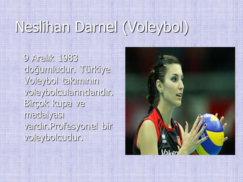 Neslihan Darnel (Voleybol) 9 Aralık 1983 doğumludur. Türkiye Voleybol takımının voleybolcularındandır. Birçok kupa ve madalyası vardır.Profesyonel bir
