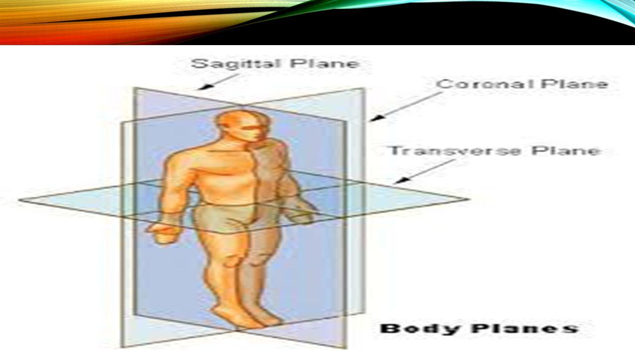 Vücut Eksenleri x, y ve z eksenleri tanımlanır.
