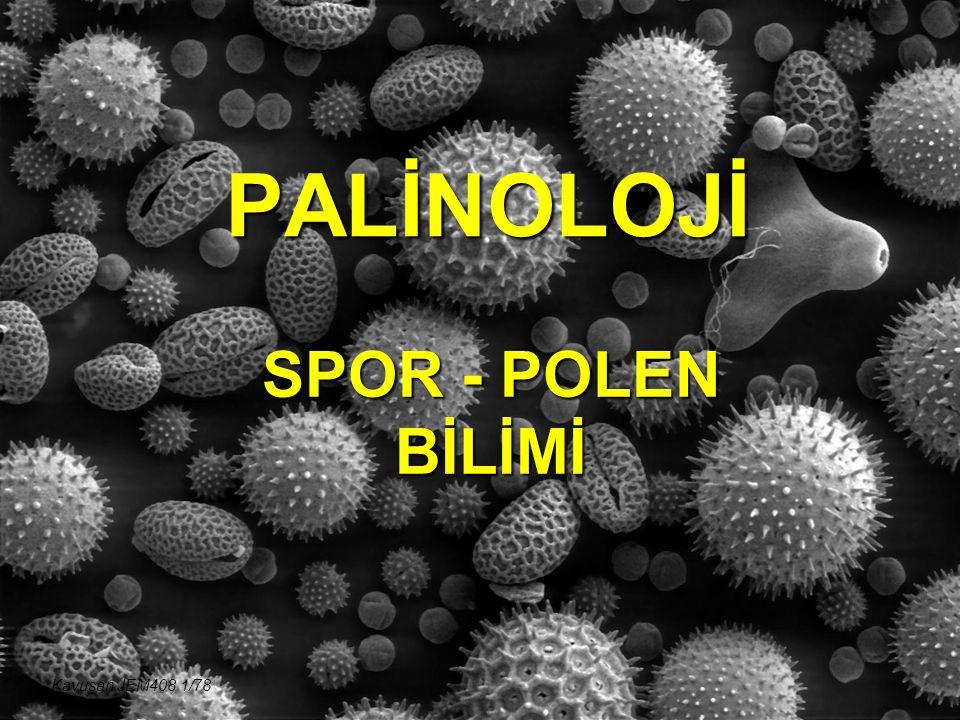 PALİNOLOJİ MONOLETES (Polypodeacea) Kavuşan JEM408 52/78