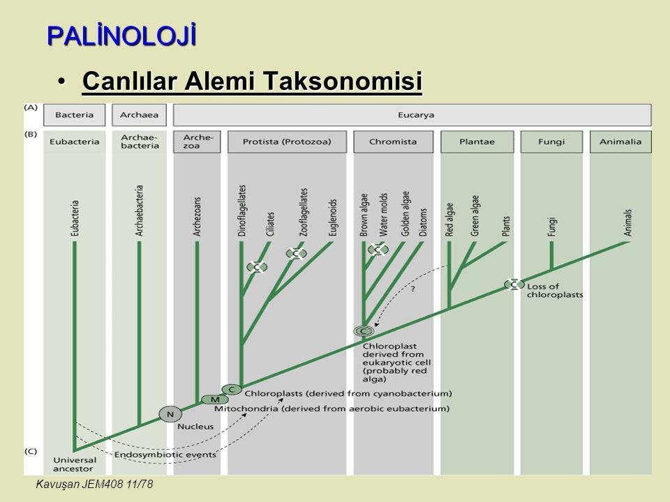 PALİNOLOJİ Canlılar Alemi TaksonomisiCanlılar Alemi Taksonomisi Kavuşan JEM408 11/78
