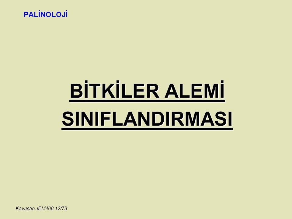 BİTKİLER ALEMİ SINIFLANDIRMASI PALİNOLOJİ Kavuşan JEM408 12/78