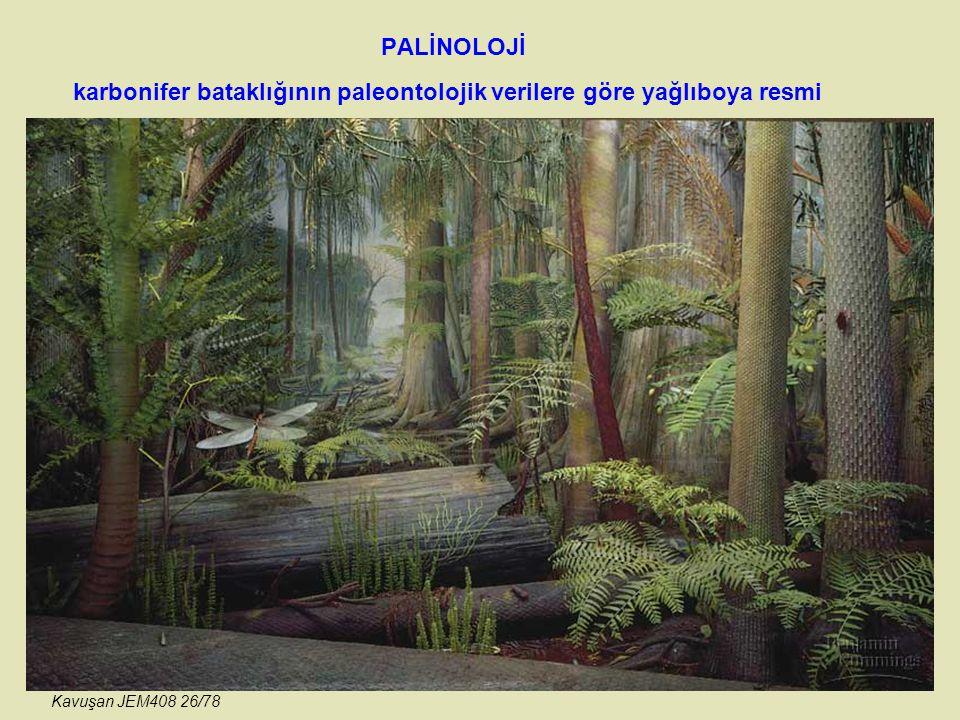 PALİNOLOJİ karbonifer bataklığının paleontolojik verilere göre yağlıboya resmi Kavuşan JEM408 26/78