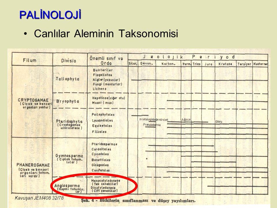PALİNOLOJİ Canlılar Aleminin Taksonomisi Kavuşan JEM408 32/78