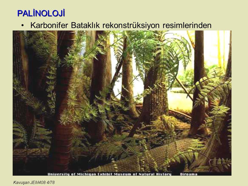 PALİNOLOJİ JEOLOJİK YARARLARI PALEOKLİMA (paleoiklim) BELİRTEÇİ belirteç parametreleriniGeçmiş dönemdeki iklimin belirlenmesinde kullanılır.