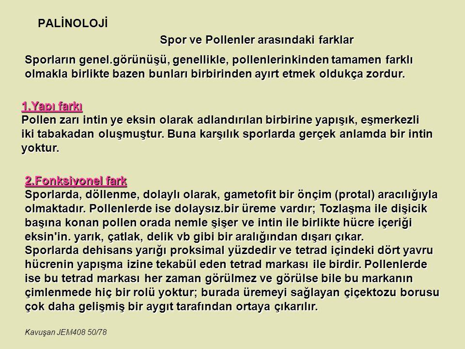 PALİNOLOJİ 2.Fonksiyonel fark Sporlarda, döllenme, dolaylı olarak, gametofit bir önçim (protal) aracılığıyla olmaktadır. Pollenlerde ise dolaysız.bir