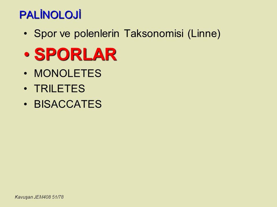 PALİNOLOJİ Spor ve polenlerin Taksonomisi (Linne) SPORLARSPORLAR MONOLETES TRILETES BISACCATES Kavuşan JEM408 51/78
