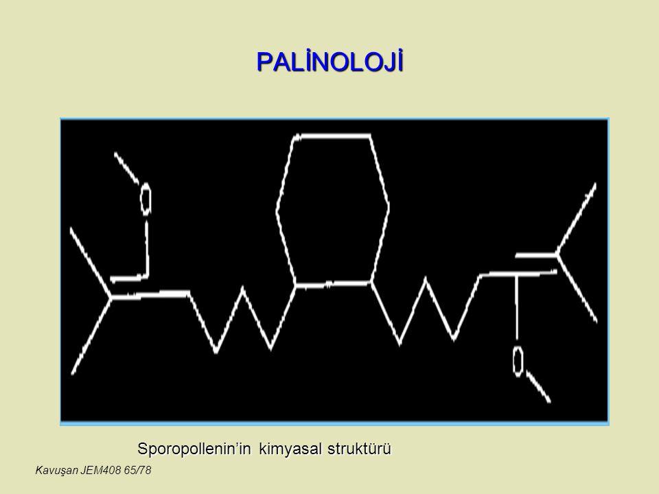 PALİNOLOJİ Sporopollenin'in kimyasal struktürü Kavuşan JEM408 65/78