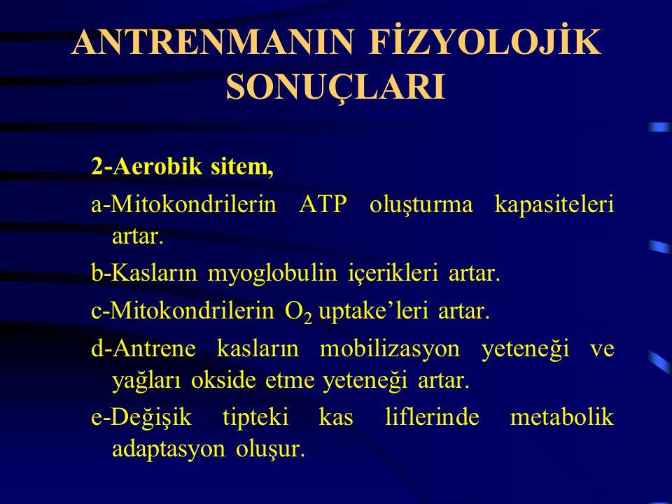ANTRENMANIN FİZYOLOJİK SONUÇLARI 2-Aerobik sitem, a-Mitokondrilerin ATP oluşturma kapasiteleri artar.