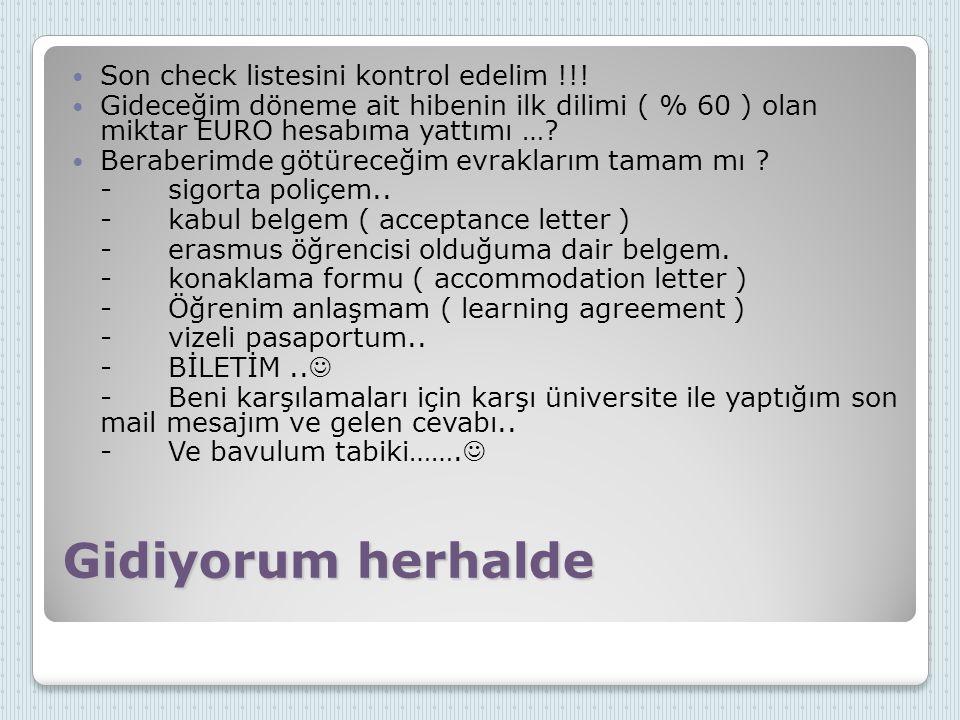 Gidiyorum herhalde Son check listesini kontrol edelim !!! Gideceğim döneme ait hibenin ilk dilimi ( % 60 ) olan miktar EURO hesabıma yattımı …? Berabe