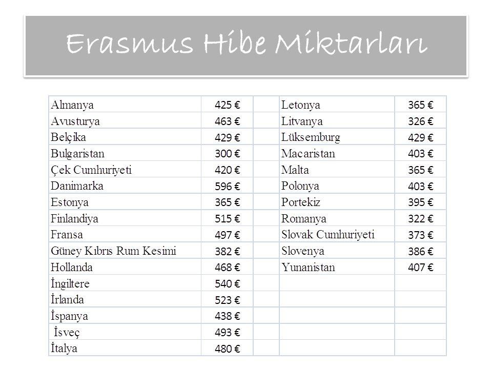 Erasmus Hibe Miktarları