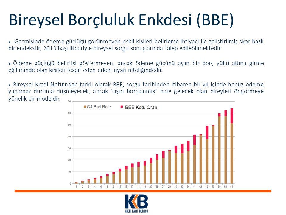 Bireysel Borçluluk Enkdesi (BBE) ► Geçmişinde ödeme güçlüğü görünmeyen riskli kişileri belirleme ihtiyacı ile geliştirilmiş skor bazlı bir endekstir,