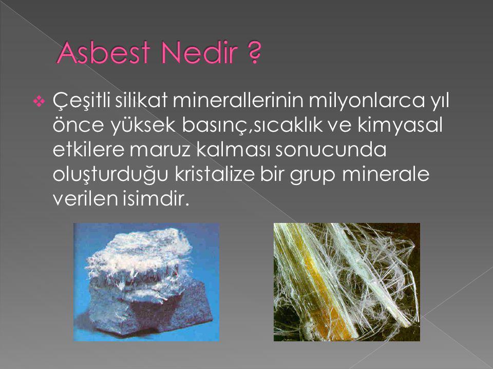  Asbest türleri arasında en tehlikeli olanları amfibol grubuna giren asbestlerdir.