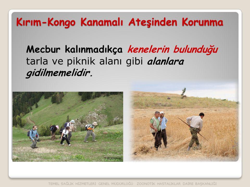 Mecbur kalınmadıkça kenelerin bulunduğu tarla ve piknik alanı gibi alanlara gidilmemelidir.