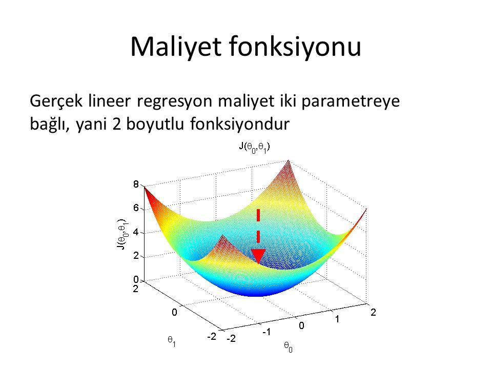 Maliyet fonksiyonu Gerçek lineer regresyon maliyet iki parametreye bağlı, yani 2 boyutlu fonksiyondur