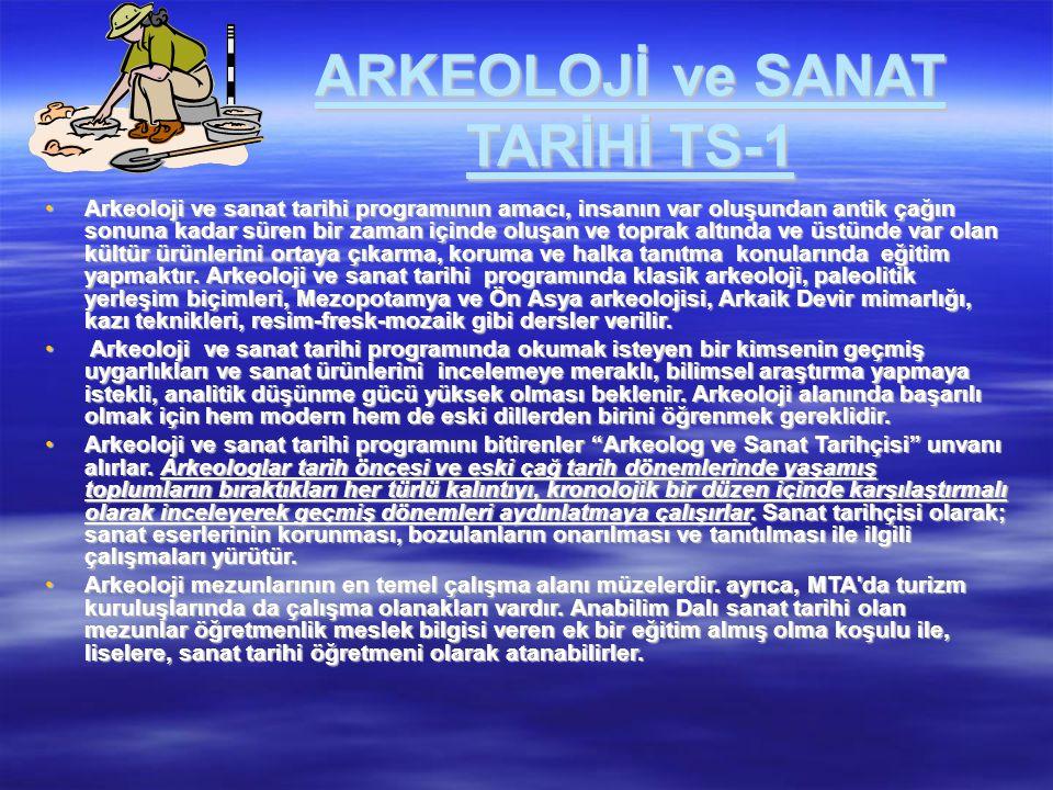 ARKEOLOJİ ve SANAT TARİHİ TS-1 Arkeoloji ve sanat tarihi programının amacı, insanın var oluşundan antik çağın sonuna kadar süren bir zaman içinde oluş