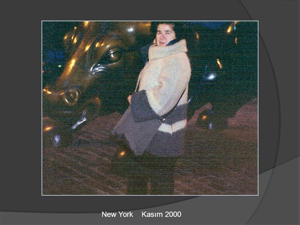 New York Kasım 2000