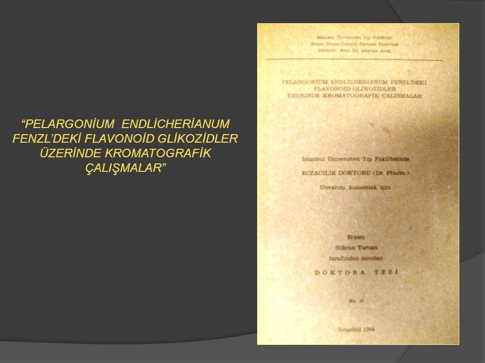 MARMARA ÜNİVERSİTESİ ECZACILIK FAKÜLTESİ 1982 – 1988