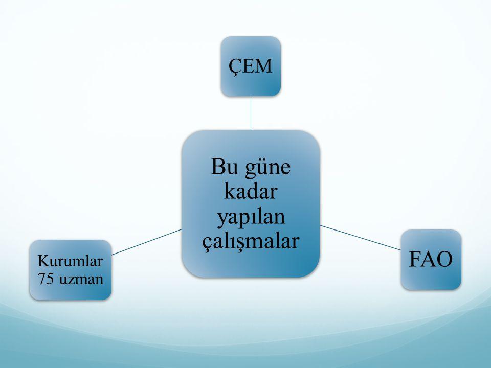 Temel İlkeler 6.Kamuoyu Oluşturma, Bilinçlendirme, Eğitim 7.