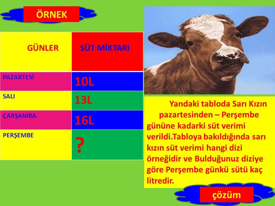 PAZARTESİ 10L SALI 13L ÇARŞAMBA 16L PERŞEMBE .