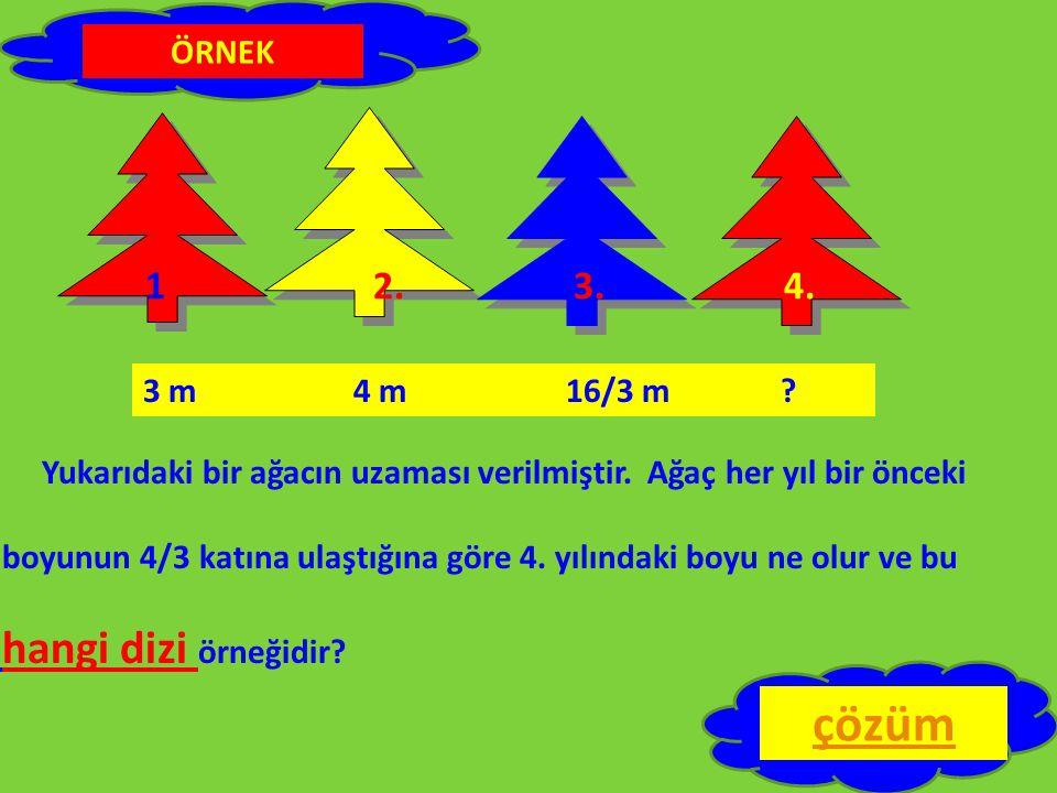 Yukarıdaki bir ağacın uzaması verilmiştir. Ağaç her yıl bir önceki boyunun 4/3 katına ulaştığına göre 4. yılındaki boyu ne olur ve bu hangi dizi örneğ