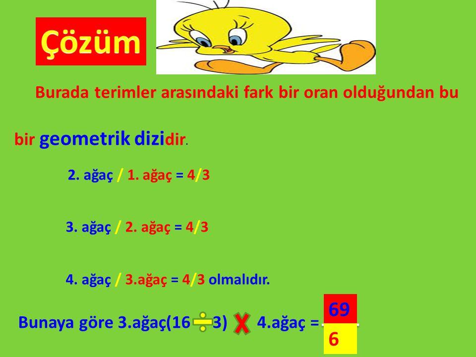 Burada terimler arasındaki fark bir oran olduğundan bu bir geometrik dizi dir. 2. ağaç / 1. ağaç = 4/3 3. ağaç / 2. ağaç = 4/3 4. ağaç / 3.ağaç = 4/3