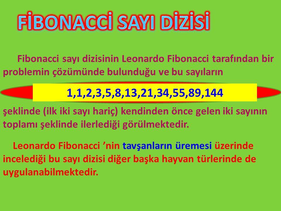 Fibonacci sayı dizisinin Leonardo Fibonacci tarafından bir problemin çözümünde bulunduğu ve bu sayıların şeklinde (ilk iki sayı hariç) kendinden önce gelen iki sayının toplamı şeklinde ilerlediği görülmektedir.