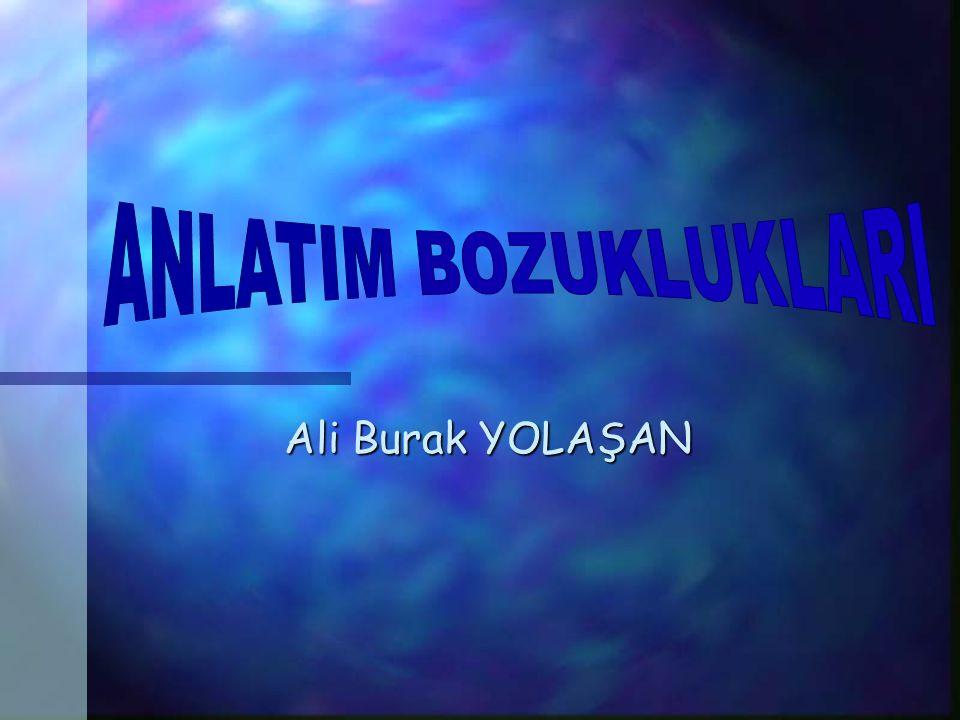 Ali Burak YOLAŞAN