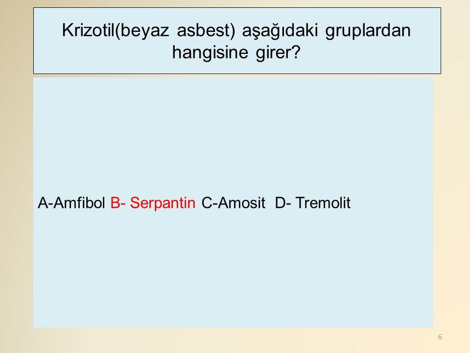 6 A-Amfibol B- Serpantin C-Amosit D- Tremolit Krizotil(beyaz asbest) aşağıdaki gruplardan hangisine girer?