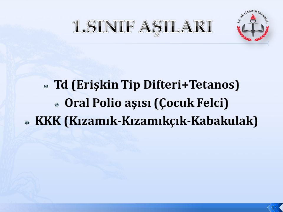  Td (Erişkin Tip Difteri+Tetanos)  Oral Polio aşısı (Çocuk Felci)  KKK (Kızamık-Kızamıkçık-Kabakulak) 82